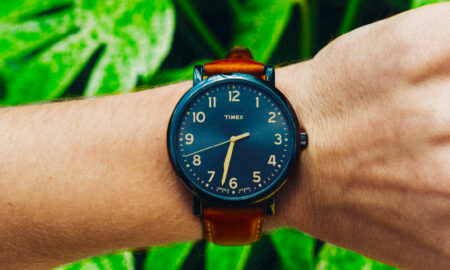 Black and brown watch on palm leaf background